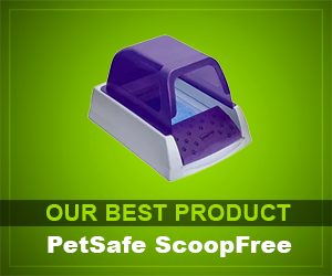 PetSafe ScoopFree Ultra review