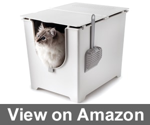 Modkat Flip Litter Box Review