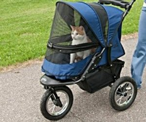 Best Cat Stroller Review