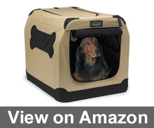 Petnation Port-A-Crate E2 Indoor Review