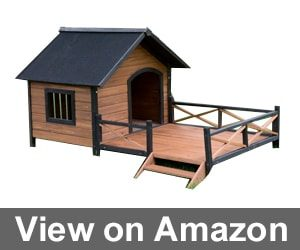 Large Dog House Lodge Boomer & George