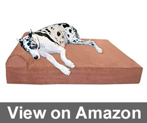 "Big Barker 7"" Pillow Top Orthopedic Dog Bed Review"