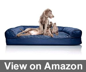 Furhaven Pet Dog Bed Review