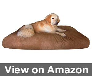 Overstuffed Orthopedic Dog Pillow Review
