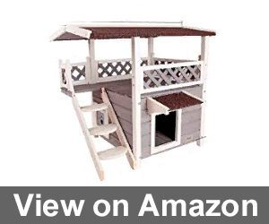 2-Story Outdoor Weatherproof Cat House Review