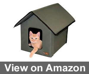 Outdoor Kitty House Review