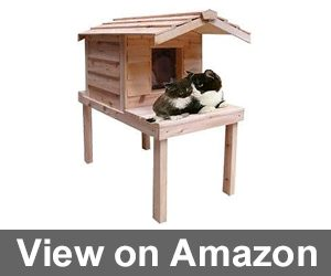 Waterproof Insulated Cedar Outdoor Cat House Review
