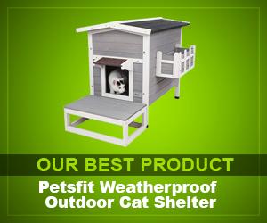 Petsfit Weatherproof Outdoor review