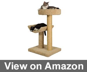 Simple Sleeper Cat Scratch Post and Bed Review