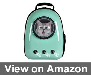 Giantex Astronaut Pet Review