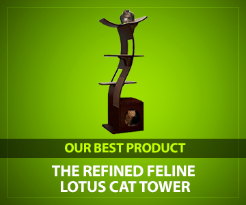 Refined Feline Lotus review