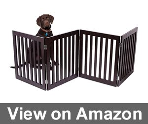 Internet's Best Traditional Dog Gate Review