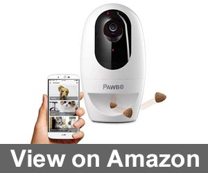 Pawbo Life Pet Camera Review