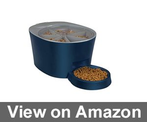 PetSafe Six Meal Automatic Pet Feeder Review