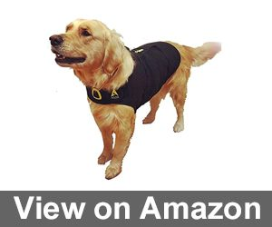 Agon CozyFur Patent Pending Canine Anti Anxiety Vest Review