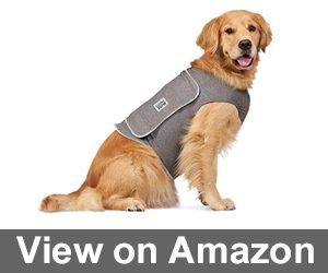 Comfort Zone Calming Vests Review