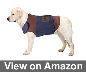 Emmy's Best Premium Pet Products Two Tone Soft Fabric Jacket Review
