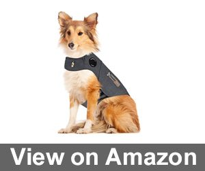 ThunderShirt Classic Dog Anxiety Jacket Review
