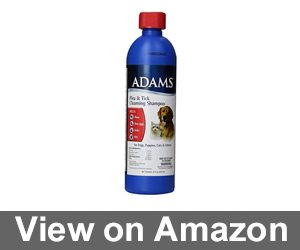 Adams Flea and Tick Cleansing Shampoo, 12-Ounce Review