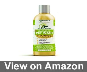 Pro Pet Works All Natural Oatmeal Dog Shampoo Review