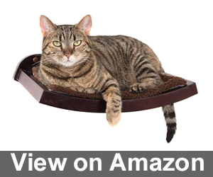 Art of Paws Cat Shelf Review