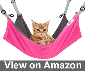 CUSFULL Cat Hammock Bed Review