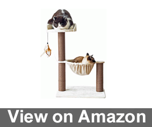Catry Cat Tree Hammock Bed Review