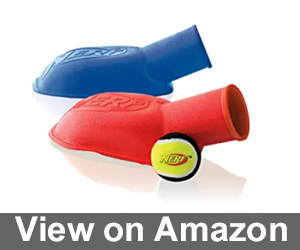 Nerf Dog Tennis Ball Stomper Review