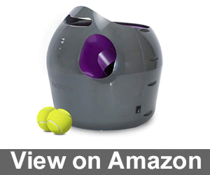 PetSafe Automatic Ball Launcher Dog Toy Review