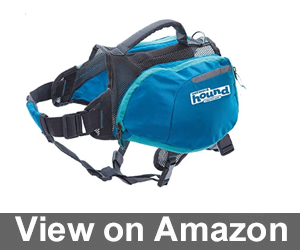 Daypak Dog Backpack Hiking Review