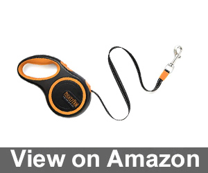 Mighty Paw Retractable Dog Leash Review