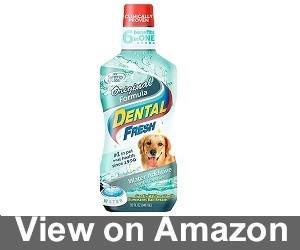 Dental Fresh Water Additive Review