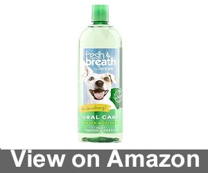Fresh Breath Oral Care Review