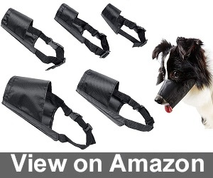 Pack of Multiple Muzzles from Ewinever Review